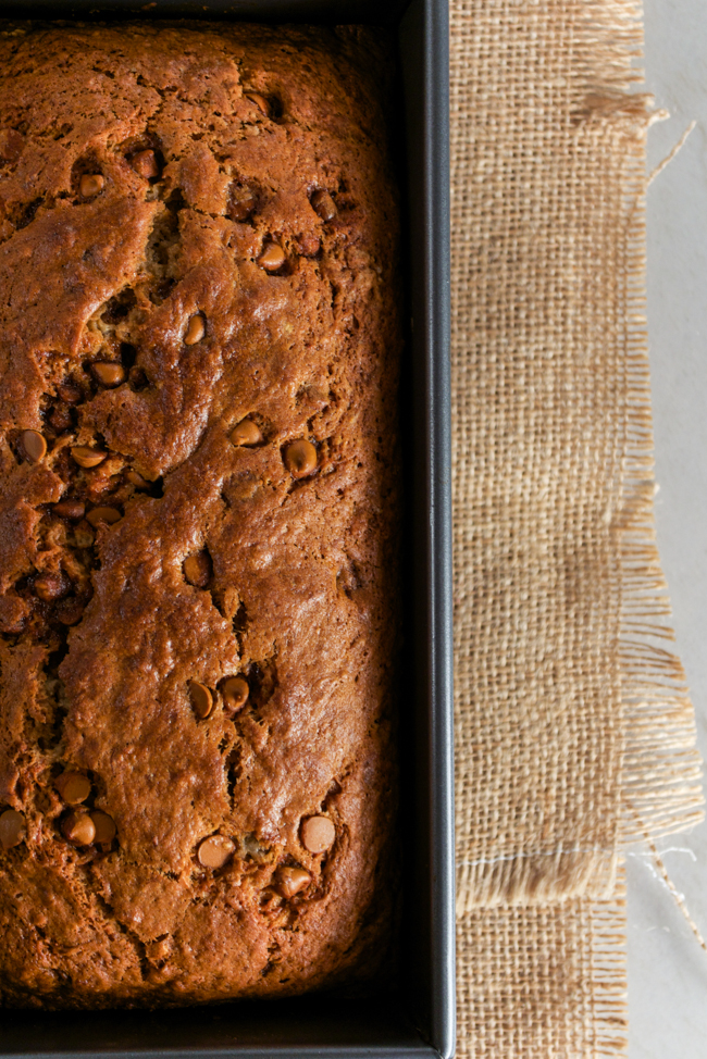 Cauliflower Banana Bread from www.sprinkledsideup.com