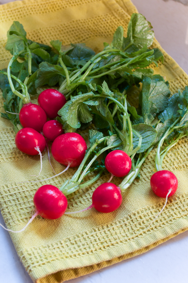 The perfect Spring salad: Radish Watercress Salad from www.sprinkledsideup.com